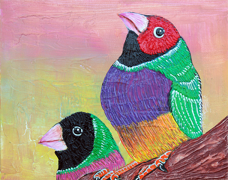 Pretty Gouldian Finches by Laura Barbosa - display